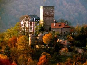 (c) Goswin v. Mallinckrodt, Burg Gamburg